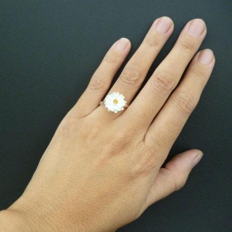 ring19-14sq800