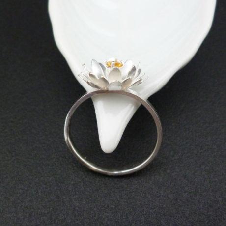 ring19-6sq800