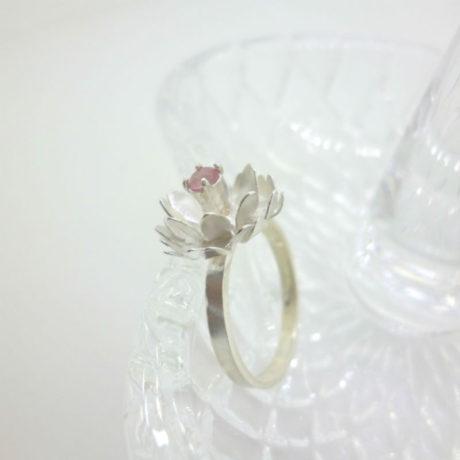ring3-6-sq800
