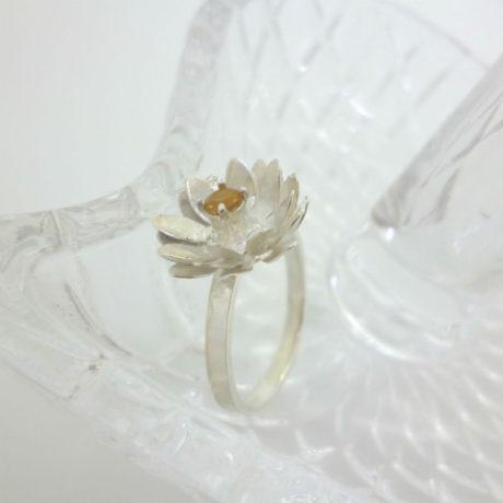 ring5-4-bright800