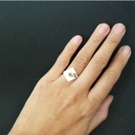 ring2-5-800